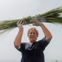Angelina Tortorella / NUova Libbaneria Mediterranea